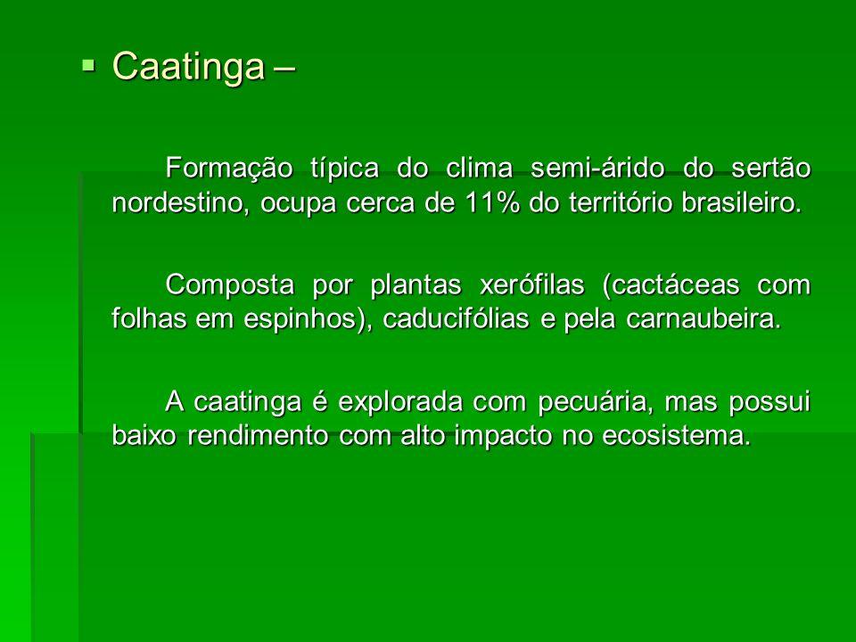 Caatinga – Caatinga – Formação típica do clima semi-árido do sertão nordestino, ocupa cerca de 11% do território brasileiro. Composta por plantas xeró