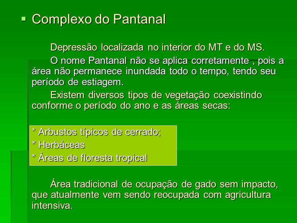 Complexo do Pantanal Complexo do Pantanal Depressão localizada no interior do MT e do MS. O nome Pantanal não se aplica corretamente, pois a área não