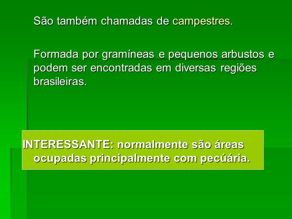 São também chamadas de campestres. Formada por gramíneas e pequenos arbustos e podem ser encontradas em diversas regiões brasileiras. INTERESSANTE: no