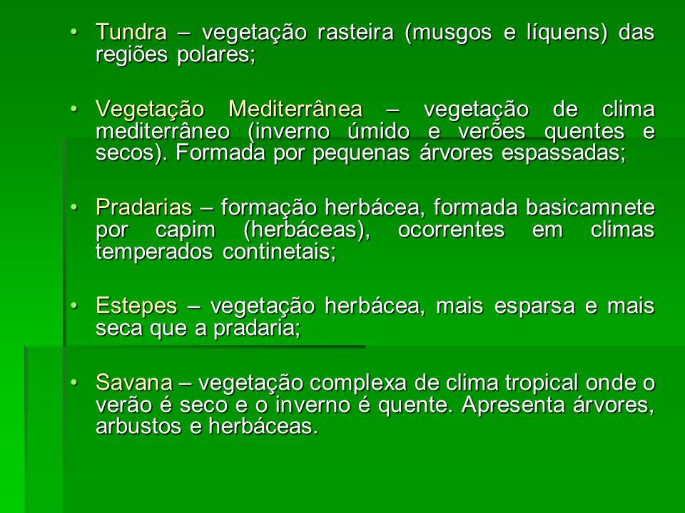 Tundra – vegetação rasteira (musgos e líquens) das regiões polares;Tundra – vegetação rasteira (musgos e líquens) das regiões polares; Vegetação Medit