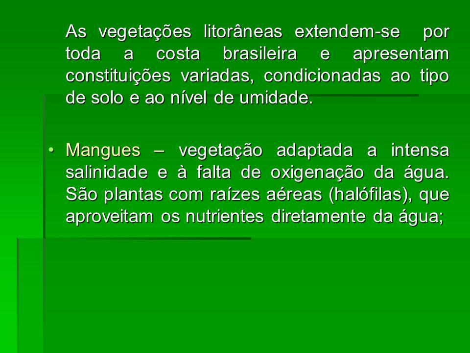 As vegetações litorâneas extendem-se por toda a costa brasileira e apresentam constituições variadas, condicionadas ao tipo de solo e ao nível de umid