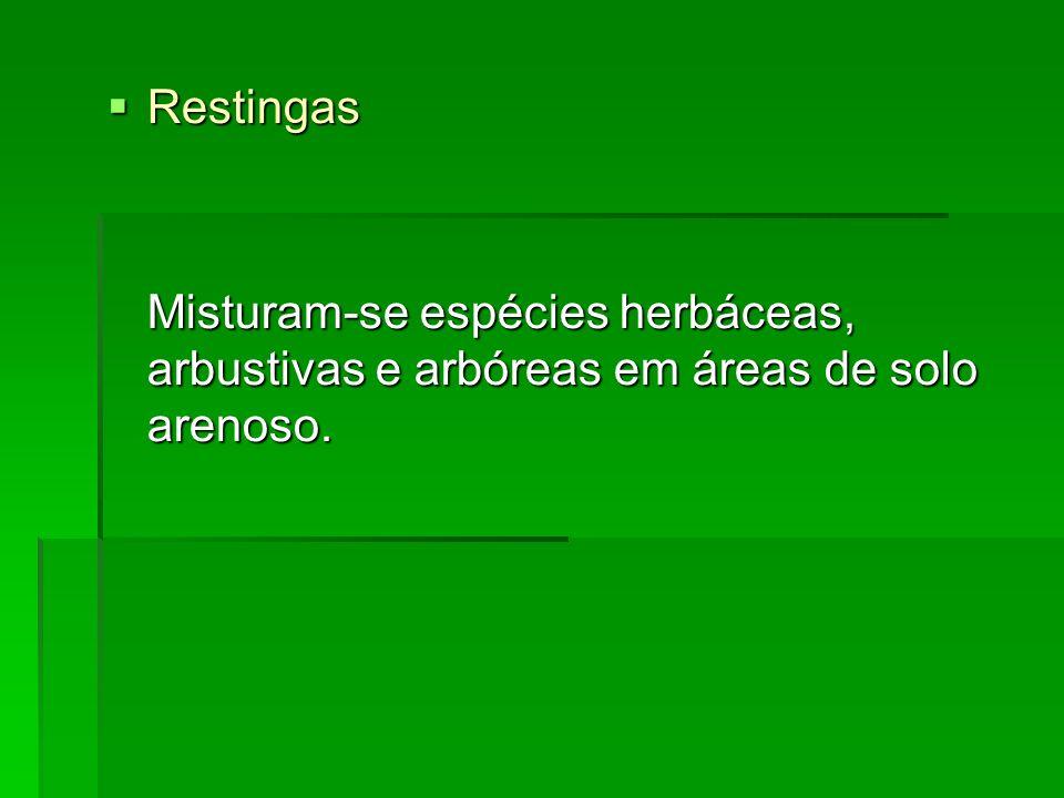 Restingas Restingas Misturam-se espécies herbáceas, arbustivas e arbóreas em áreas de solo arenoso.