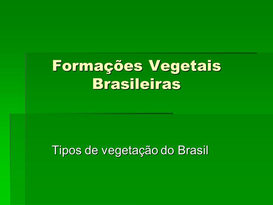 Formações Vegetais Brasileiras Tipos de vegetação do Brasil