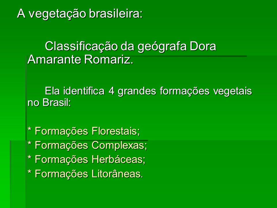 A vegetação brasileira: Classificação da geógrafa Dora Amarante Romariz. Ela identifica 4 grandes formações vegetais no Brasil: * Formações Florestais