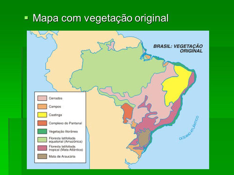 Mapa com vegetação original Mapa com vegetação original