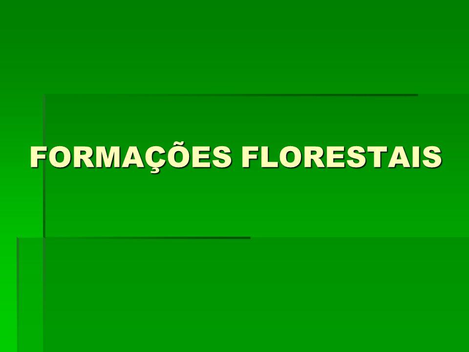 FORMAÇÕES FLORESTAIS