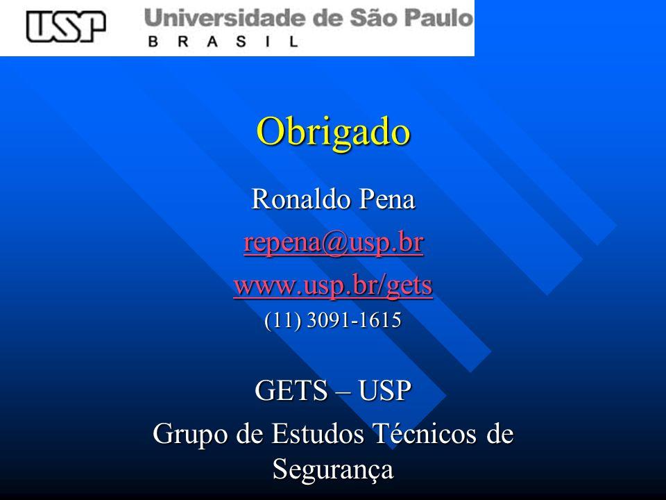 Obrigado Ronaldo Pena repena@usp.br www.usp.br/gets (11) 3091-1615 GETS – USP Grupo de Estudos Técnicos de Segurança