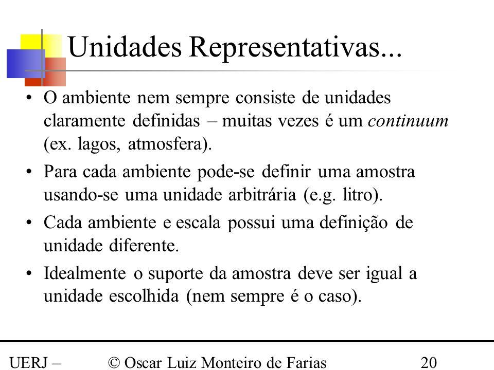 UERJ – Março 2008 © Oscar Luiz Monteiro de Farias20 Unidades Representativas... O ambiente nem sempre consiste de unidades claramente definidas – muit