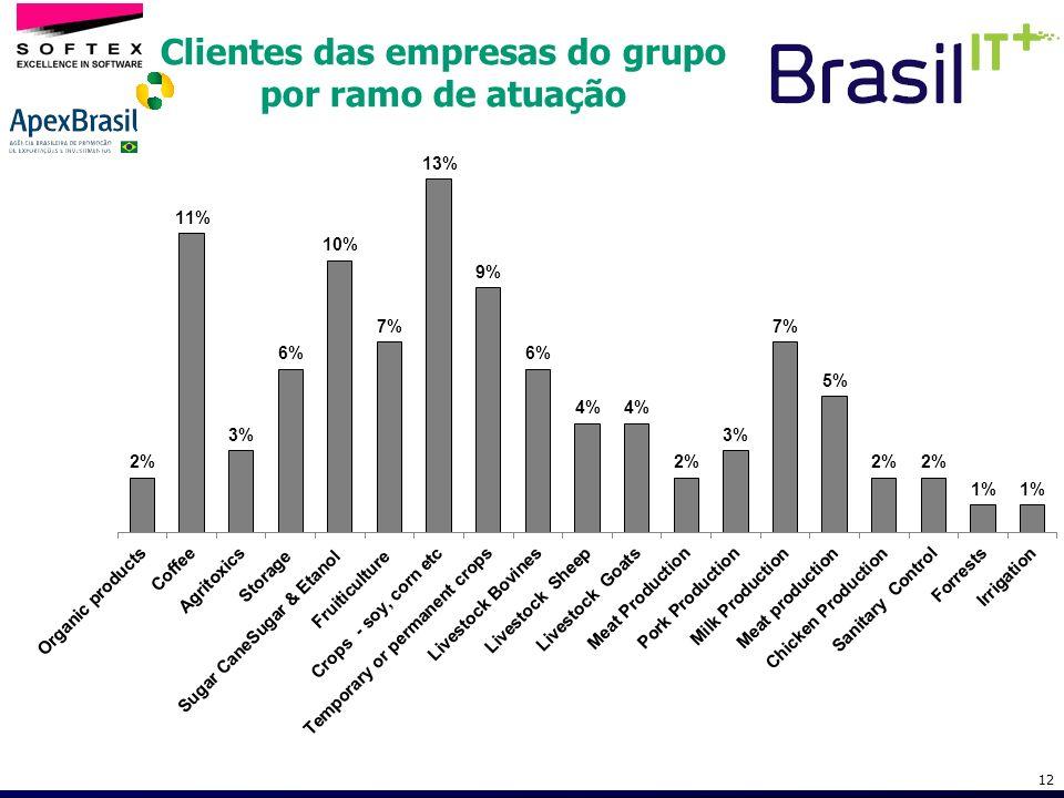 12 Clientes das empresas do grupo por ramo de atuação