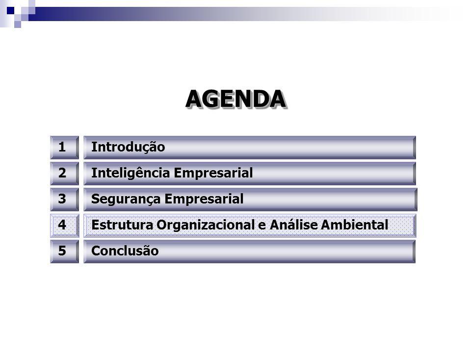 AGENDAAGENDA 1Introdução 3 2 4Estrutura Organizacional e Análise Ambiental Segurança Empresarial Inteligência Empresarial 5Conclusão