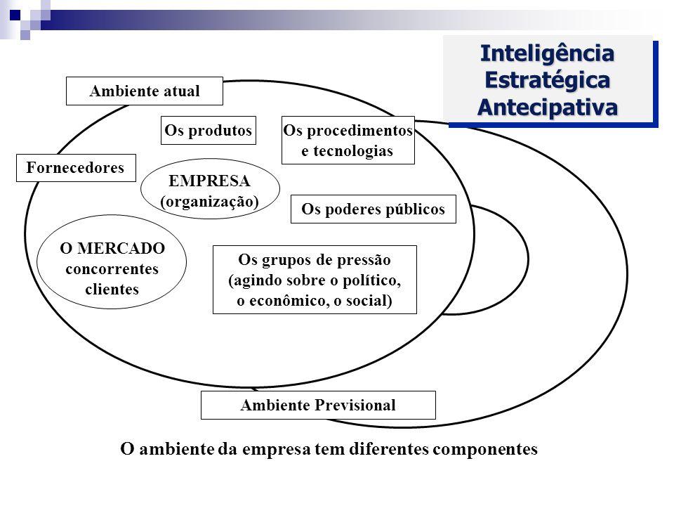 Inteligência Estratégica Antecipativa Ambiente atual Os produtos Fornecedores EMPRESA (organização) Os procedimentos e tecnologias Os poderes públicos