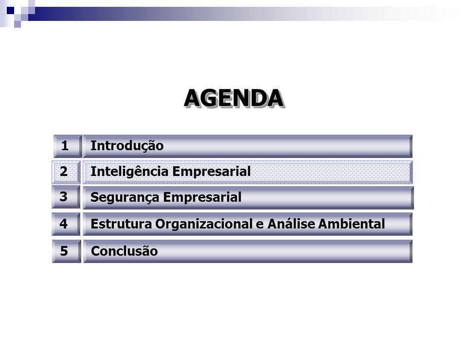 AGENDAAGENDA 1Introdução 3 4 2Inteligência Empresarial Segurança Empresarial Estrutura Organizacional e Análise Ambiental 5Conclusão