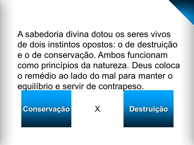 X ConservaçãoConservaçãoDestruiçãoDestruição A sabedoria divina dotou os seres vivos de dois instintos opostos: o de destruic ̧ ão e o de conservac ̧