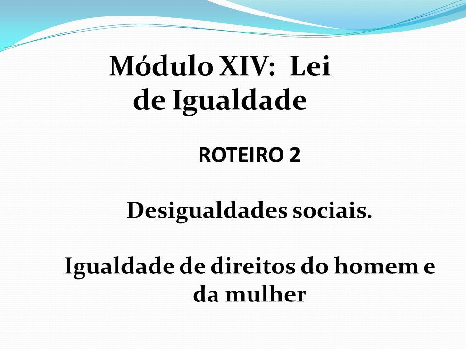 ROTEIRO 2 Desigualdades sociais. Igualdade de direitos do homem e da mulher Módulo XIV: Lei de Igualdade