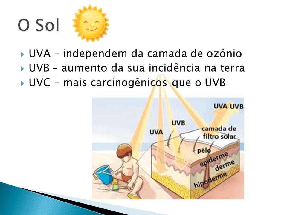 UVA – independem da camada de ozônio UVB – aumento da sua incidência na terra UVC – mais carcinogênicos que o UVB