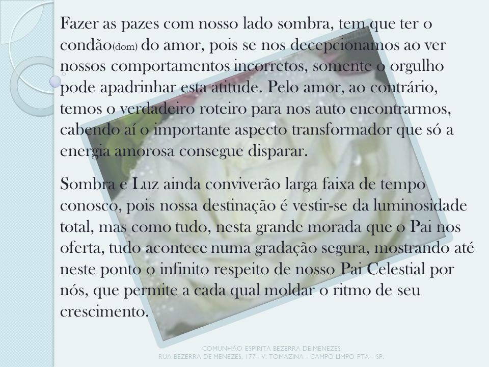 COMUNHÃO ESPIRITA BEZERRA DE MENEZES RUA BEZERRA DE MENEZES, 177 - V. TOMAZINA - CAMPO LIMPO PTA – SP. Fazer as pazes com nosso lado sombra, tem que t