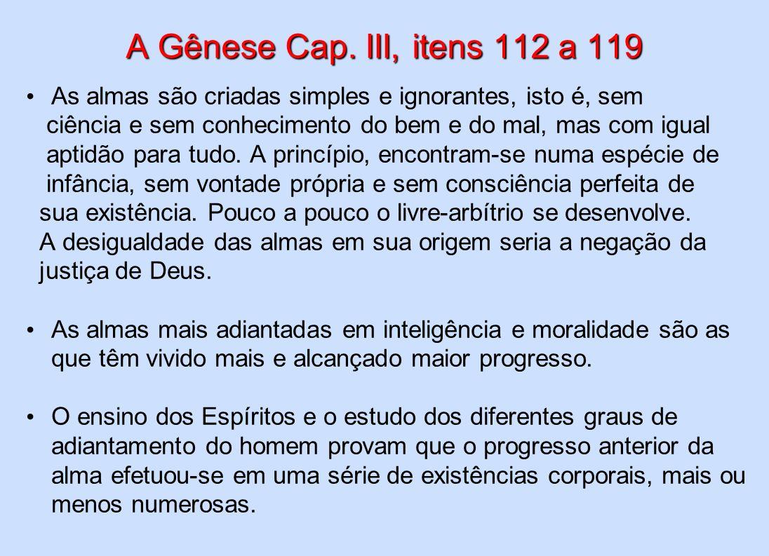 A Gênese Cap. III, itens 112 a 119 As almas são criadas simples e ignorantes, isto é, sem ciência e sem conhecimento do bem e do mal, mas com igual ap