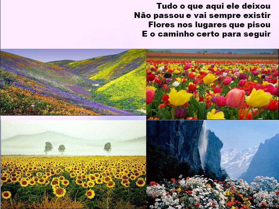 Tudo o que aqui ele deixou Não passou e vai sempre existir Flores nos lugares que pisou E o caminho certo para seguir