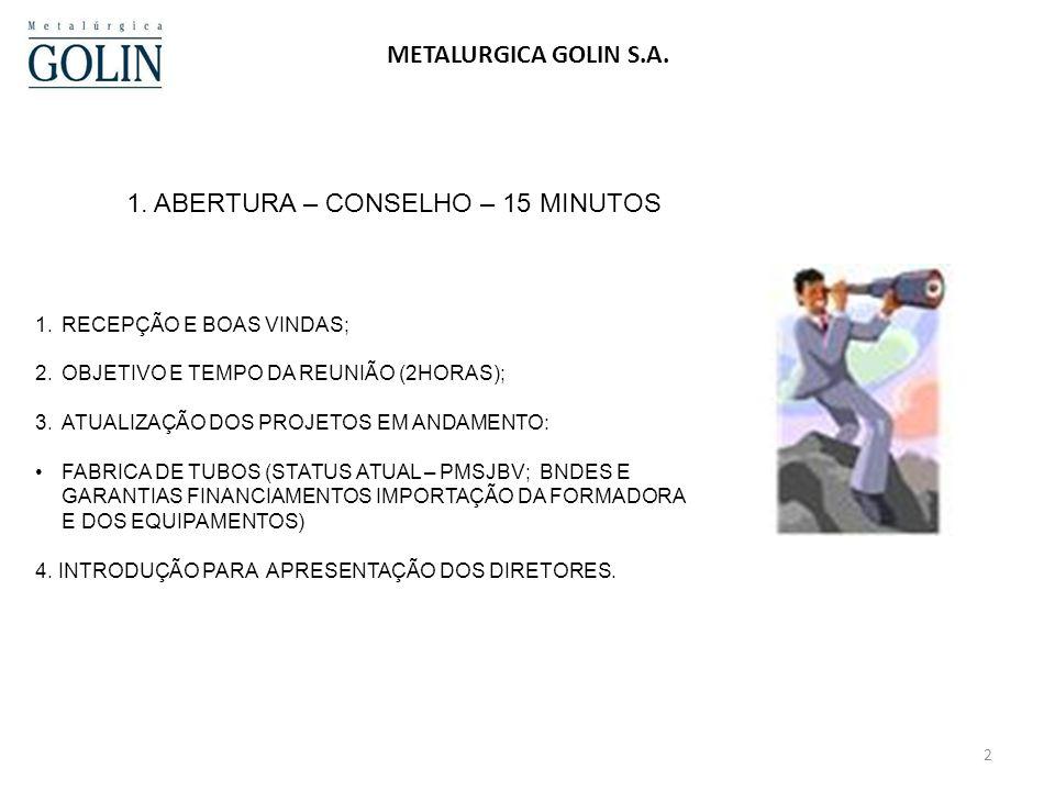 1 METALURGICA GOLIN S.A. REUNIÃO DE ACIONISTAS – 12 DE FEVEREIRO DE 2011 AGENDA 1.ABERTURA – CONSELHO – 15 MINUTOS 2.VENDAS E MARKETING - 25 MINUTOS 3
