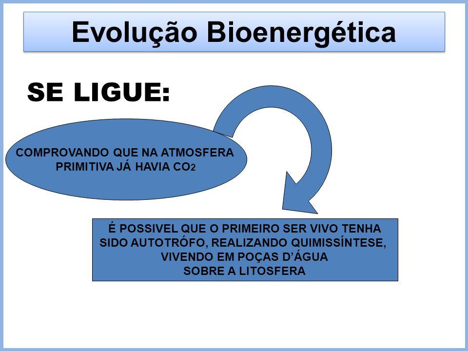 Evolução Bioenergética SE LIGUE: COMPROVANDO QUE NA ATMOSFERA PRIMITIVA JÁ HAVIA CO 2 É POSSIVEL QUE O PRIMEIRO SER VIVO TENHA SIDO AUTOTRÓFO, REALIZA