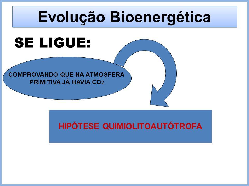 Evolução Bioenergética SE LIGUE: COMPROVANDO QUE NA ATMOSFERA PRIMITIVA JÁ HAVIA CO 2 HIPÓTESE QUIMIOLITOAUTÓTROFA