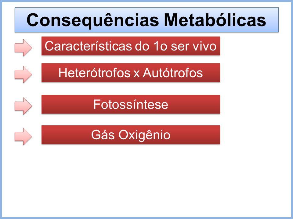 Consequências Metabólicas Características do 1o ser vivo Heterótrofos x Autótrofos Fotossíntese Gás Oxigênio