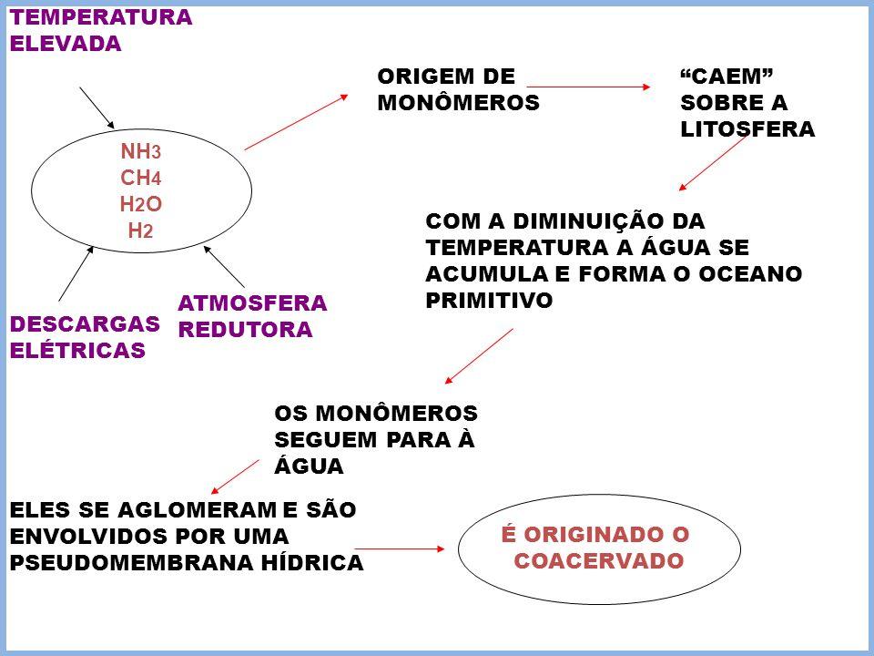 NH 3 CH 4 H 2 O H 2 DESCARGAS ELÉTRICAS TEMPERATURA ELEVADA ATMOSFERA REDUTORA ORIGEM DE MONÔMEROS CAEM SOBRE A LITOSFERA COM A DIMINUIÇÃO DA TEMPERAT