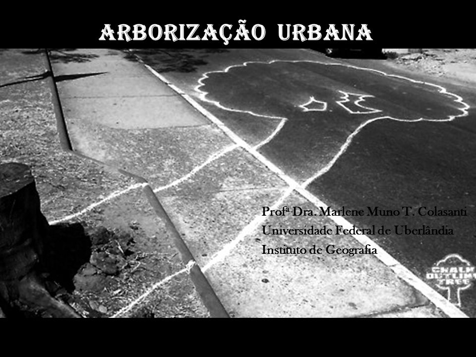 Arborização URBANA Prof a Dra. Marlene Muno T. Colasanti Universidade Federal de Uberlândia Instituto de Geografia