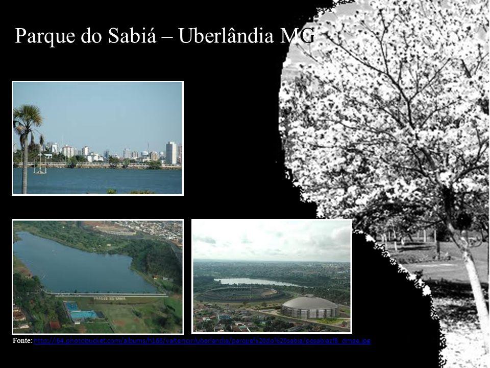 Parque do Sabiá – Uberlândia MG Fonte: http://i64.photobucket.com/albums/h166/valterjcjr/uberlandia/parque%20do%20sabia/pqsabiazf8_dmae.jpghttp://i64.