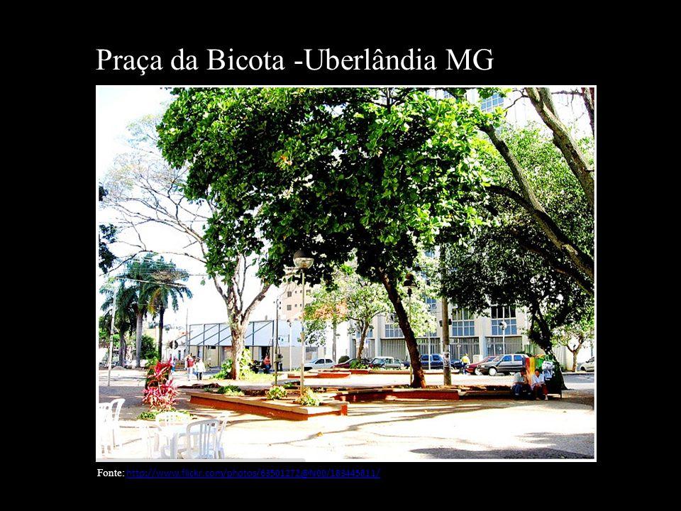 Praça Da Bicota -Uberlândia MG Fonte~ Jardim Manaca Uberlandia
