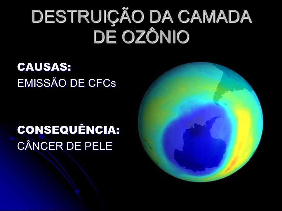 DESTRUIÇÃO DA CAMADA DE OZÔNIO CAUSAS: EMISSÃO DE CFCs CONSEQUÊNCIA: CÂNCER DE PELE
