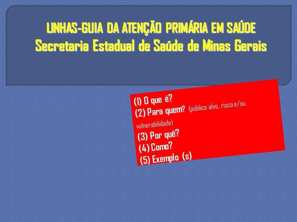 LINHAS-GUIA DA ATENÇÃO PRIMÁRIA EM SAÚDE Secretaria Estadual de Saúde de Minas Gerais (1) O que é? (2) Para quem ? (público alvo, risco e/ou vulnerabi