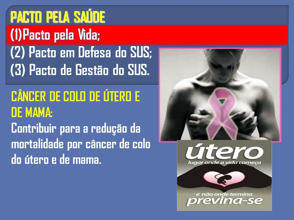 PACTO PELA SAÚDE (1)Pacto pela Vida; (2) Pacto em Defesa do SUS; (3) Pacto de Gestão do SUS. CÂNCER DE COLO DE ÚTERO E DE MAMA: Contribuir para a redu
