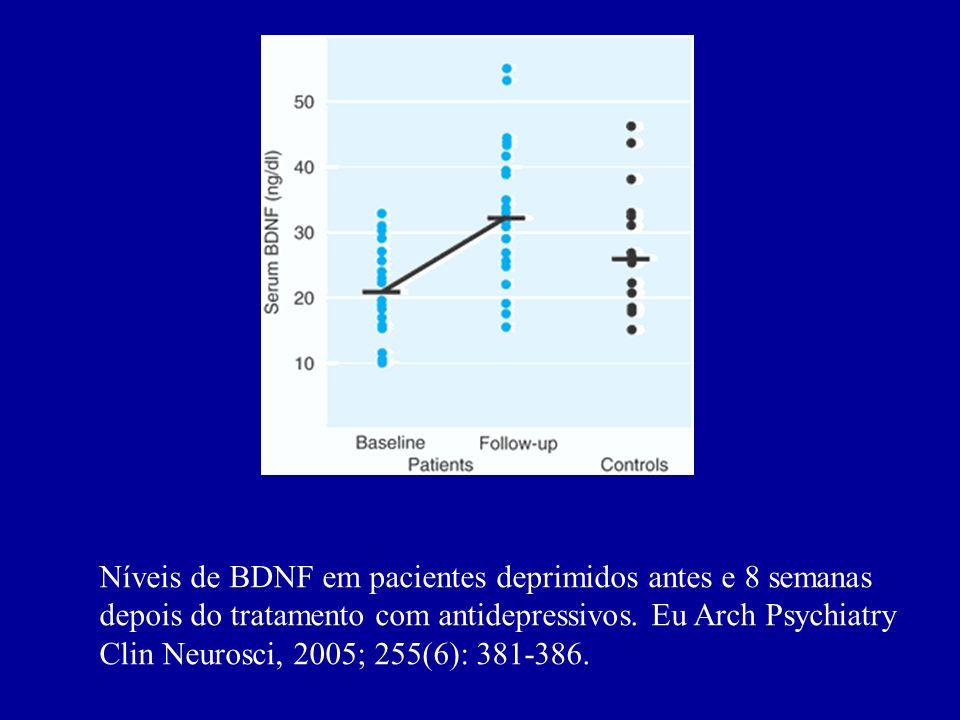 Neurogênese entre os dias 5 e 28 em ratos que utilizaram placebo efluoxetina. Science, 2003; 301: 805-809