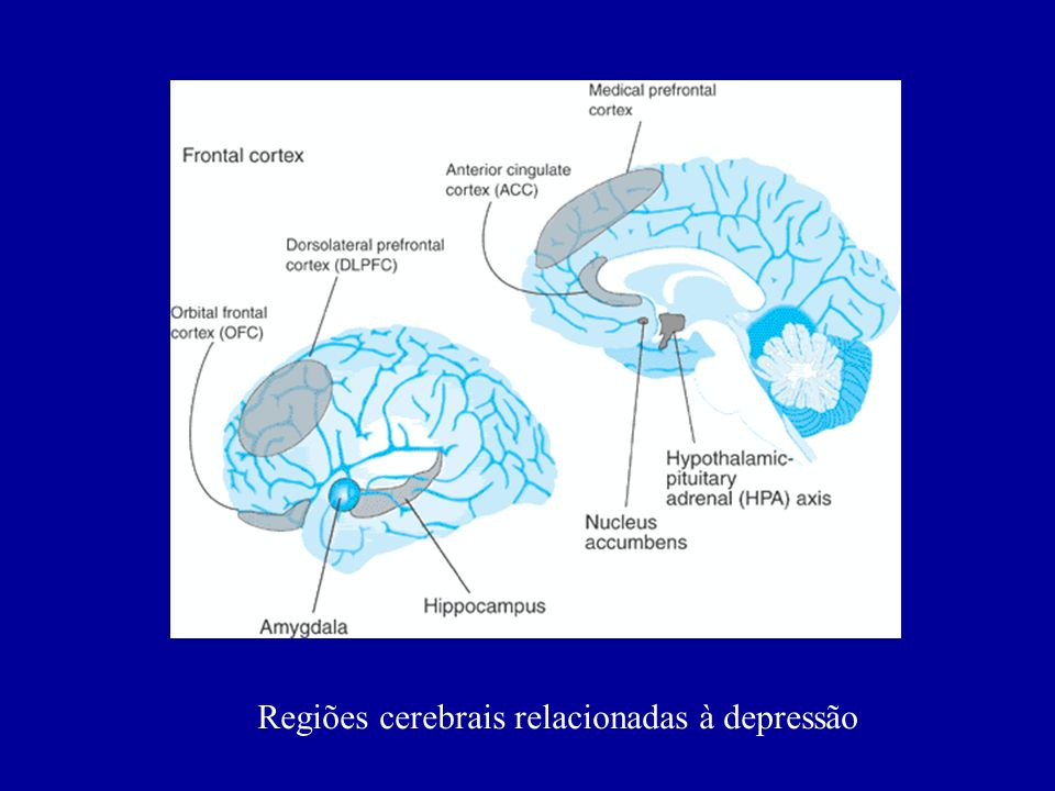 Concentrações de cortisol em pacientes deprimidos e controles sadios. J Clin Endocrinol Metab, 1997; 82 (1): 234-238.
