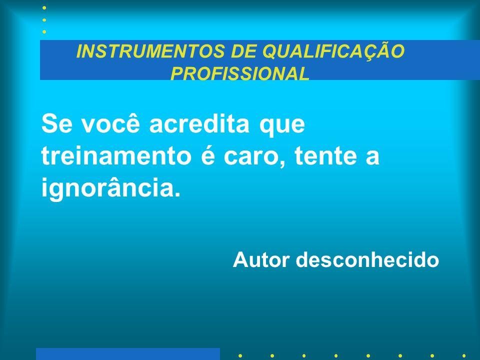 INSTRUMENTOS DE QUALIFICAÇÃO PROFISSIONAL Se você acredita que treinamento é caro, tente a ignorância. Autor desconhecido