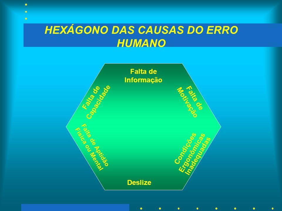 HEXÁGONO DAS CAUSAS DO ERRO HUMANO Deslize Falta de Informação Condições Ergonômicas Inadequadas Falta de Motivação Falta de Aptidão Física ou Mental Falta de Capacidade