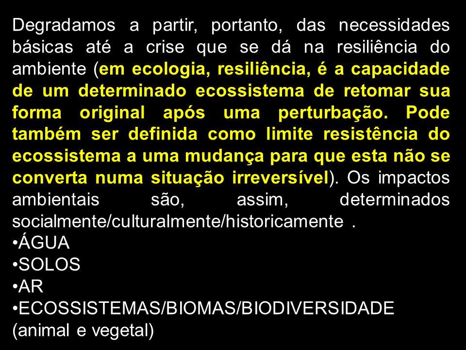 Degradamos a partir, portanto, das necessidades básicas até a crise que se dá na resiliência do ambiente (em ecologia, resiliência, é a capacidade de