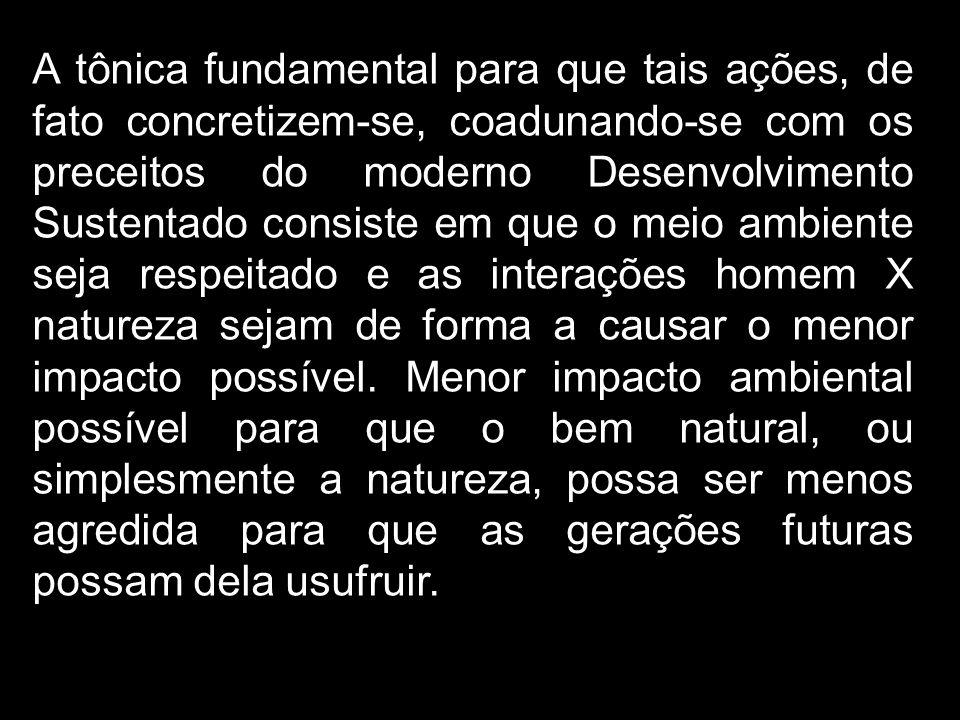 A tônica fundamental para que tais ações, de fato concretizem-se, coadunando-se com os preceitos do moderno Desenvolvimento Sustentado consiste em que