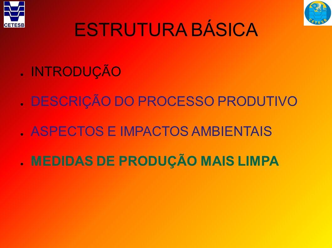 ESTRUTURA BÁSICA INTRODUÇÃO DESCRIÇÃO DO PROCESSO PRODUTIVO ASPECTOS E IMPACTOS AMBIENTAIS MEDIDAS DE PRODUÇÃO MAIS LIMPA