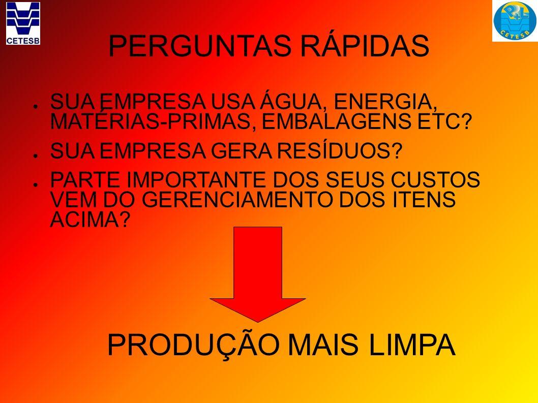 GUIAS AMBIENTAIS PROPOSTA DE TRABALHO Questionário Guia como produto da Câmara ambiental Dados (indicadores)fornecidos pelo setor produtivo Medidas de P+L que a indústria adota Discussão conjunta do que é possível em medidas preventivas e corretivas.