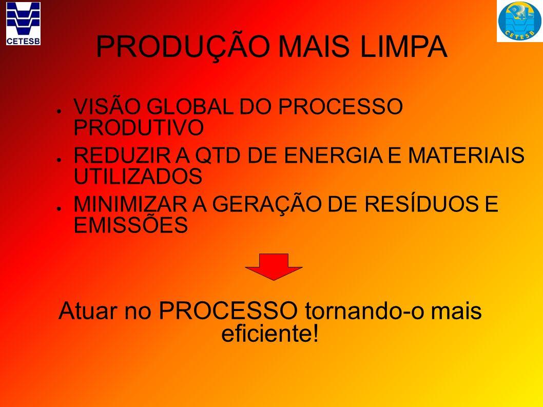 PRODUÇÃO MAIS LIMPA VISÃO GLOBAL DO PROCESSO PRODUTIVO REDUZIR A QTD DE ENERGIA E MATERIAIS UTILIZADOS MINIMIZAR A GERAÇÃO DE RESÍDUOS E EMISSÕES Atua