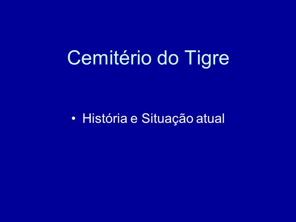 Cemitério do Tigre História e Situação atual