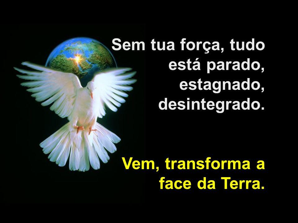 Sem tua força, tudo está parado, estagnado, desintegrado. Vem, transforma a face da Terra.