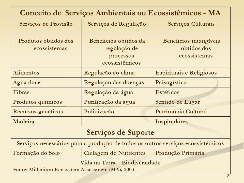2 Vida na Terra – Biodiversidade Fonte: Millenium Ecosystem Assessment (MA), 2003 Produção PrimáriaCiclagem de NutrientesFormação do Solo Serviços nec