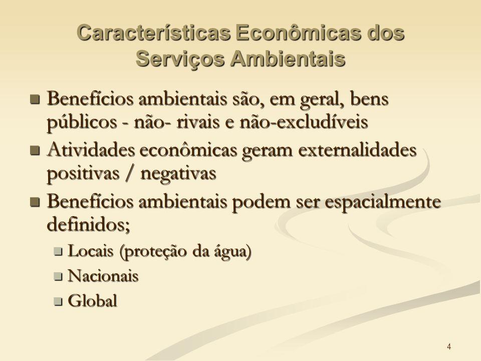 4 Características Econômicas dos Serviços Ambientais Benefícios ambientais são, em geral, bens públicos - não- rivais e não-excludíveis Benefícios amb