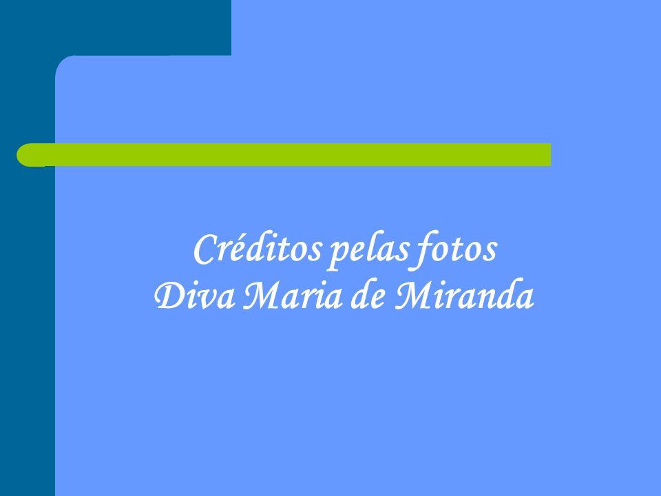 Créditos pelas fotos Diva Maria de Miranda