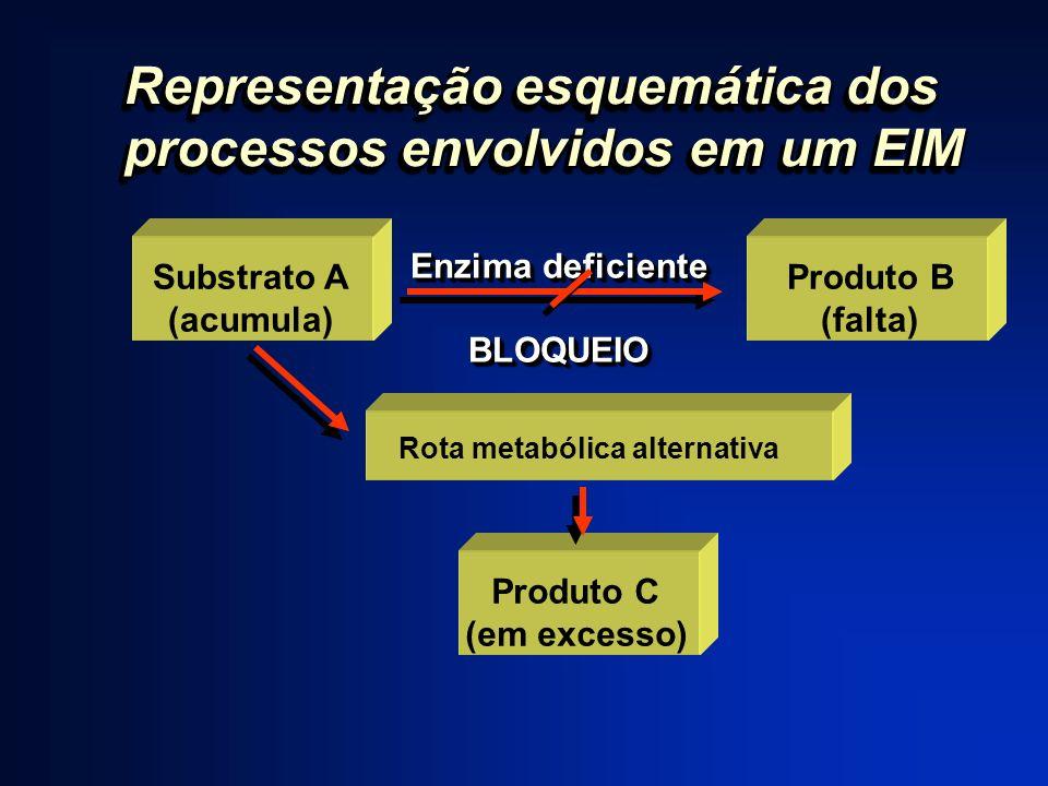 Representação esquemática dos processos envolvidos em um EIM Enzima deficiente BLOQUEIO BLOQUEIO Produto B (falta) Substrato A (acumula) Rota metabóli