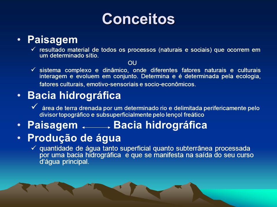 Conceitos Paisagem resultado material de todos os processos (naturais e sociais) que ocorrem em um determinado sítio.