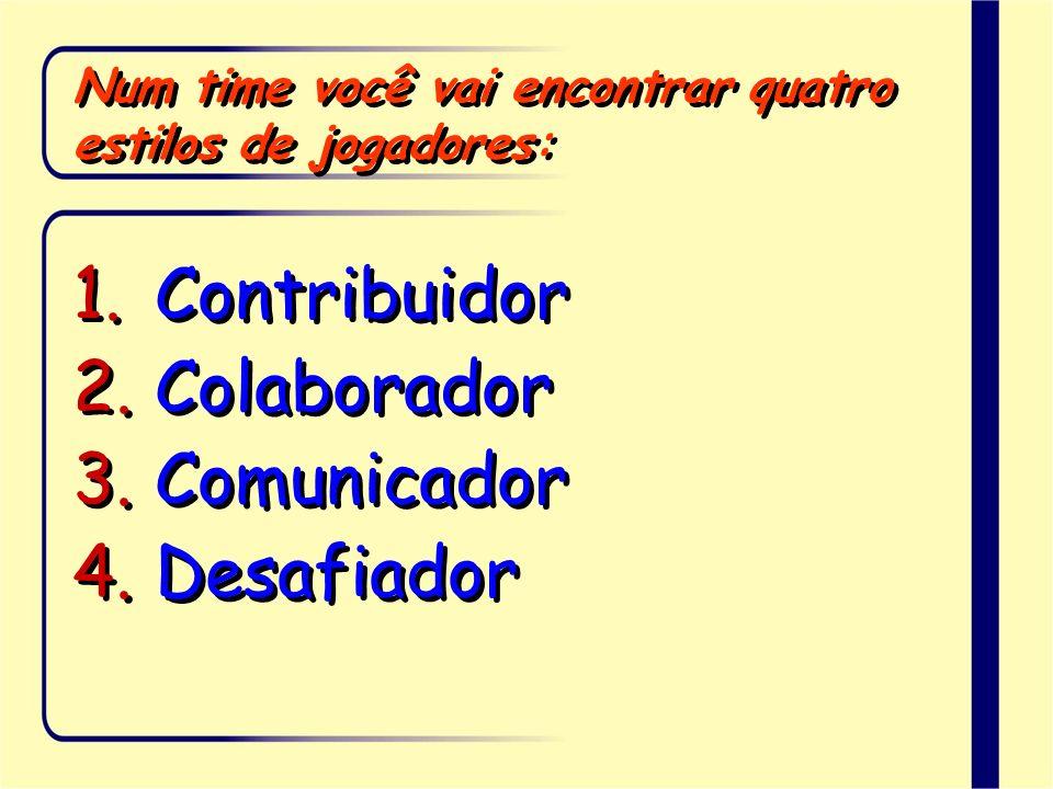 Num time você vai encontrar quatro estilos de jogadores: Contribuidor Colaborador Comunicador Desafiador Contribuidor Colaborador Comunicador Desafiad